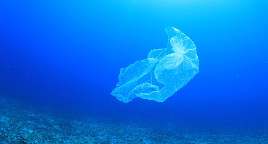 La plastica biodegradabile è davvero sostenibile?