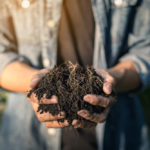 tersan-compost
