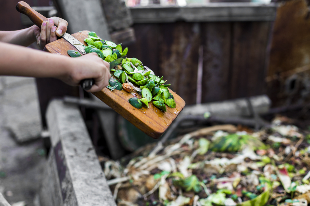 In crescita il settore del compostaggio: mancano però gli impianti