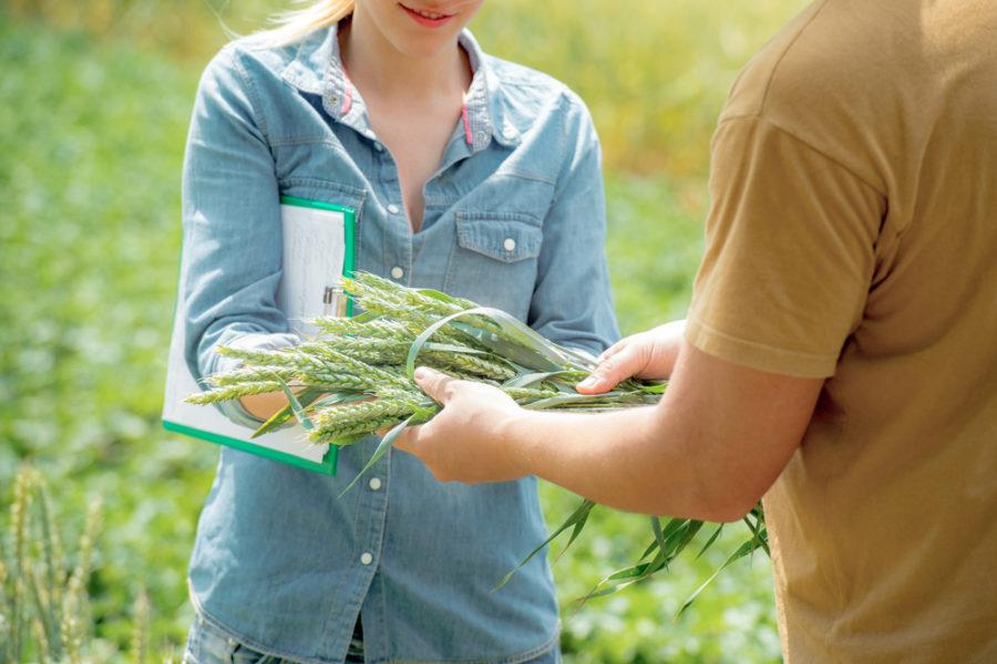Ricerchiamo una nuova risorsa da inserire nel reparto agronomico-commerciale.