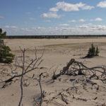 audit-ue-desertificazione-tersan-puglia