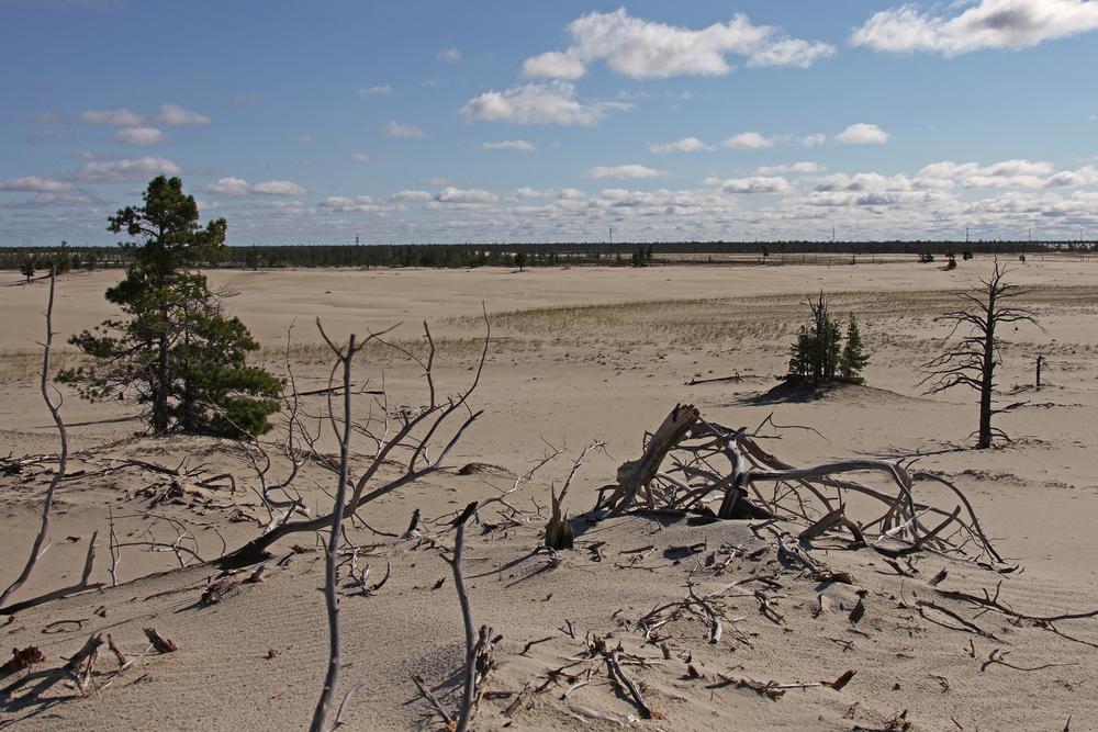 L'audit della Corte dei Conti UE in Italia sulla desertificazione.