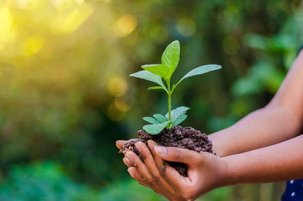 22 aprile, Giornata Mondiale della Terra: le regole di una famiglia 'green'.