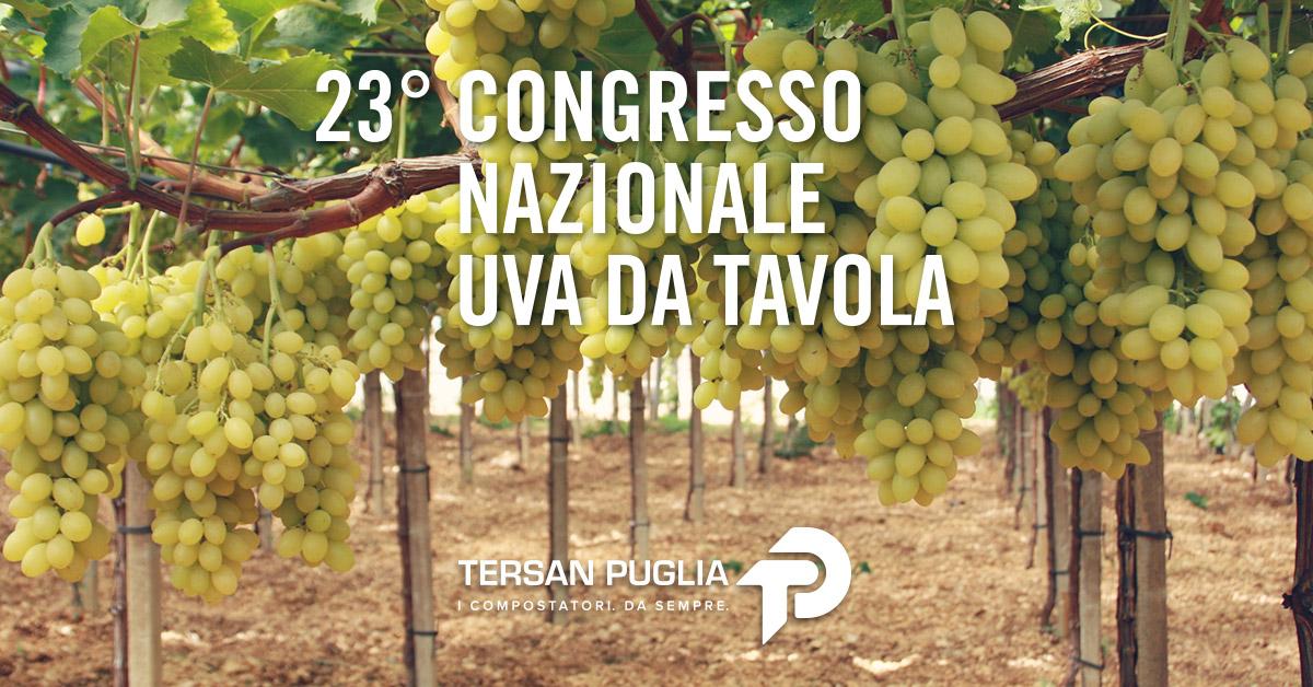 Al 23° Congresso Nazionale Uva da Tavola, i risultati dello studio condotto da Tersan