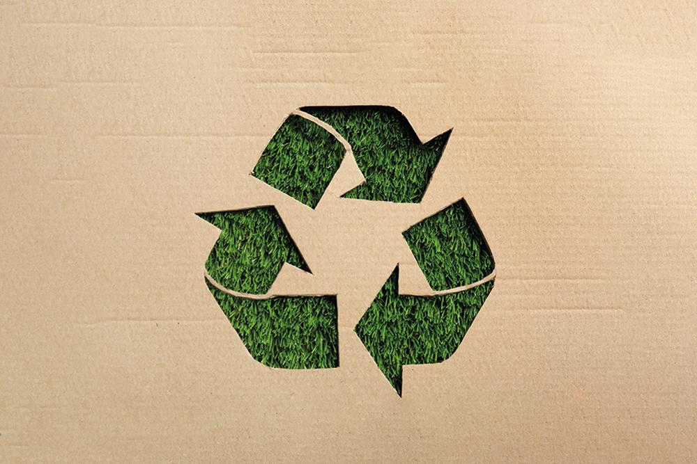 Rapporto sui rifiuti urbani e l'economia circolare nel sud Italia